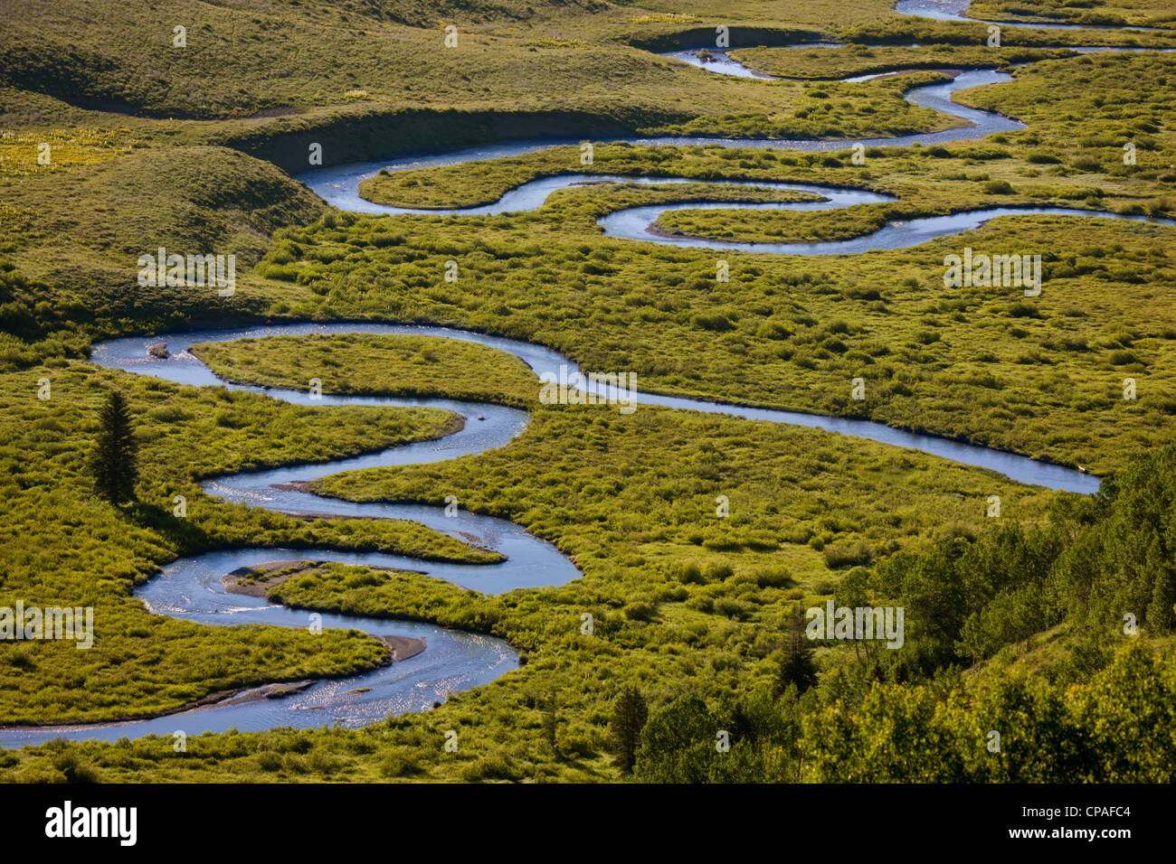 USA, Colorado, Gunnison National Forest. Overview of the upper East River's  meandering pattern - Stock Image