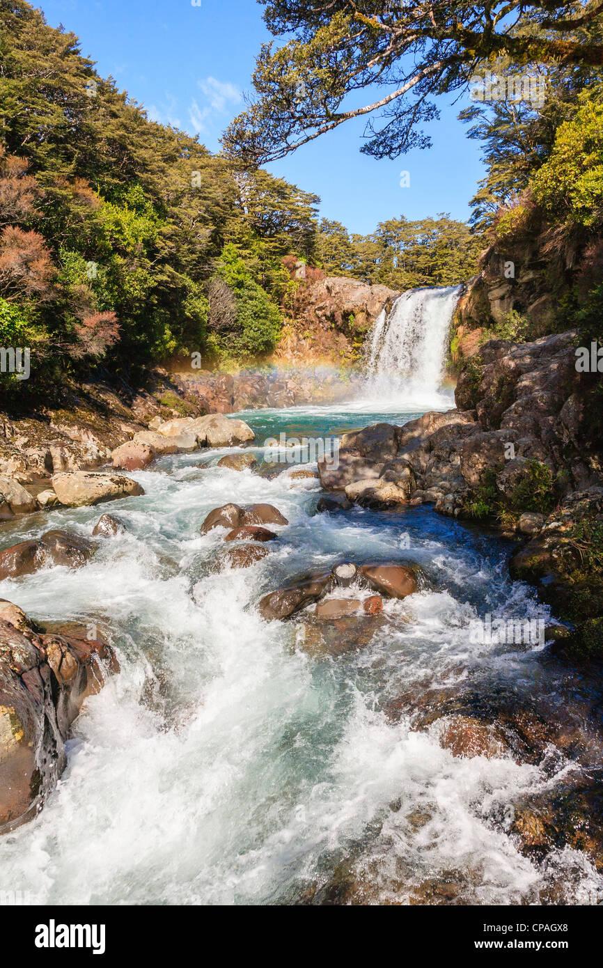 Tawhai Falls, on the Whakapapanui River, in the Tongariro National Park, New Zealand. - Stock Image