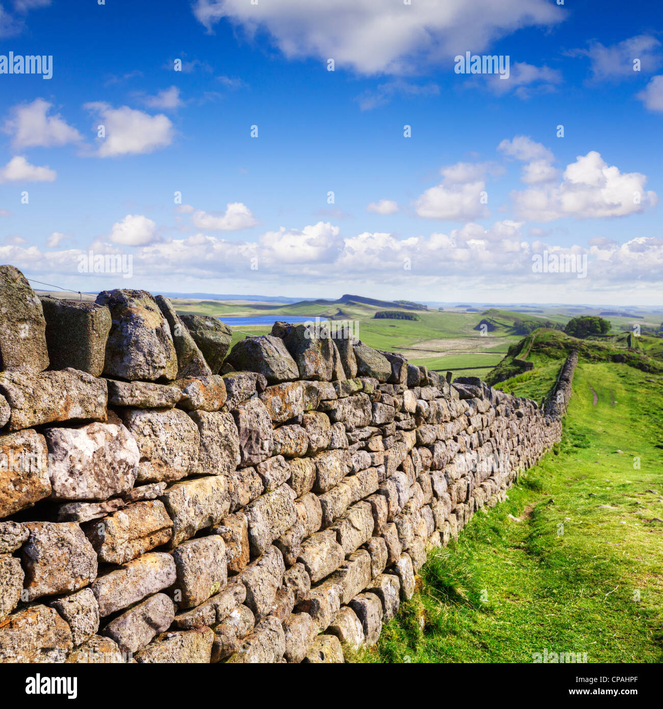 Dry stone wall running the same course as Hadrian's Wall in Northumberland. - Stock Image