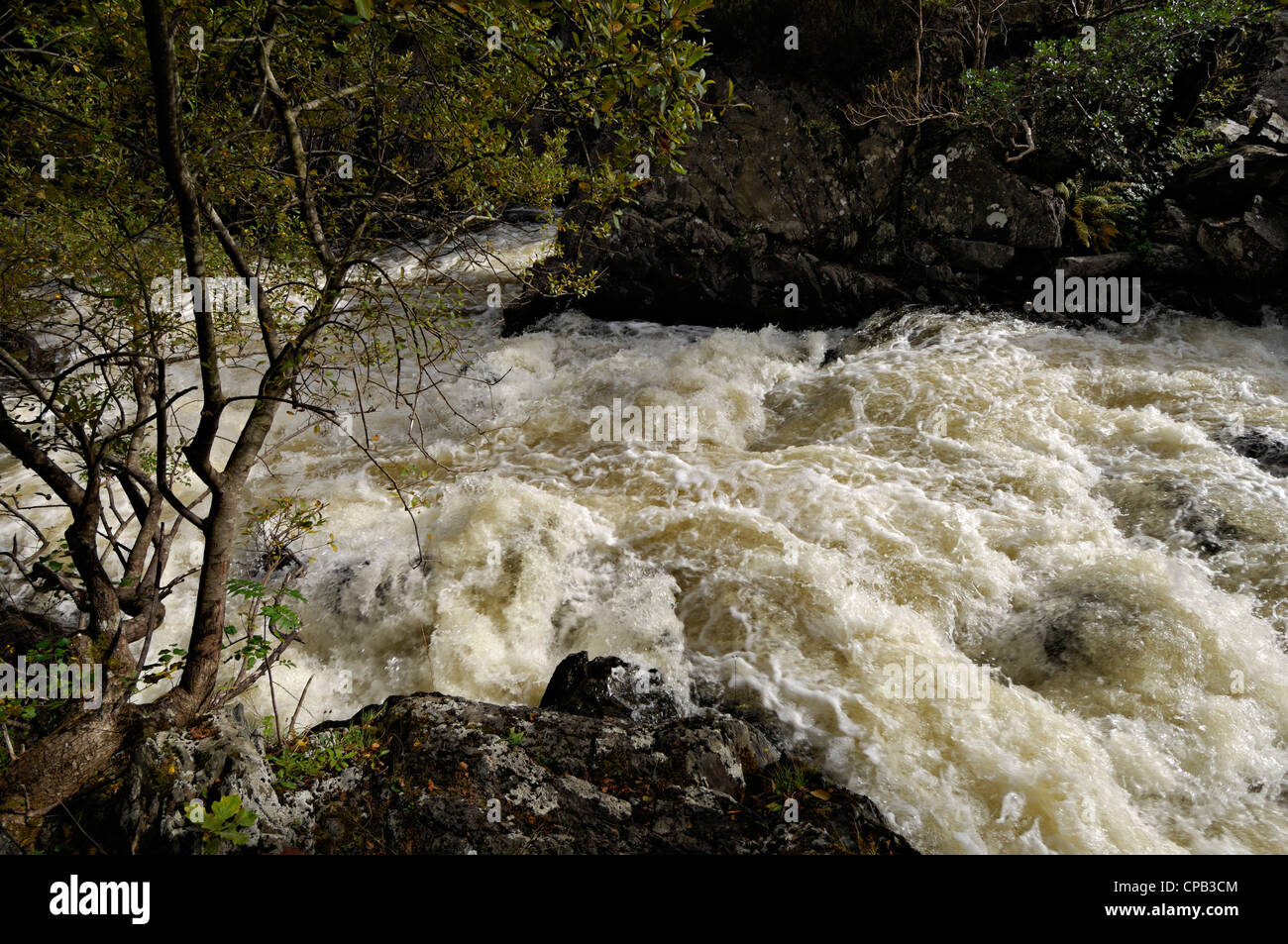 A torrent of white water rushes down the narrow Falls of Leny near Callander, after heavy rainfall. Scotland, UK. - Stock Image
