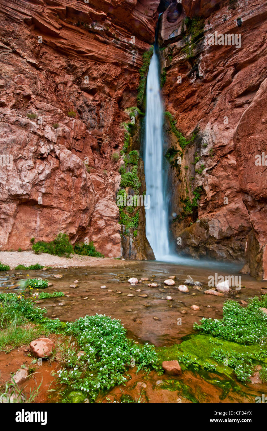 Deer Creek Falls in the Grand Canyon at RM 136 - Stock Image