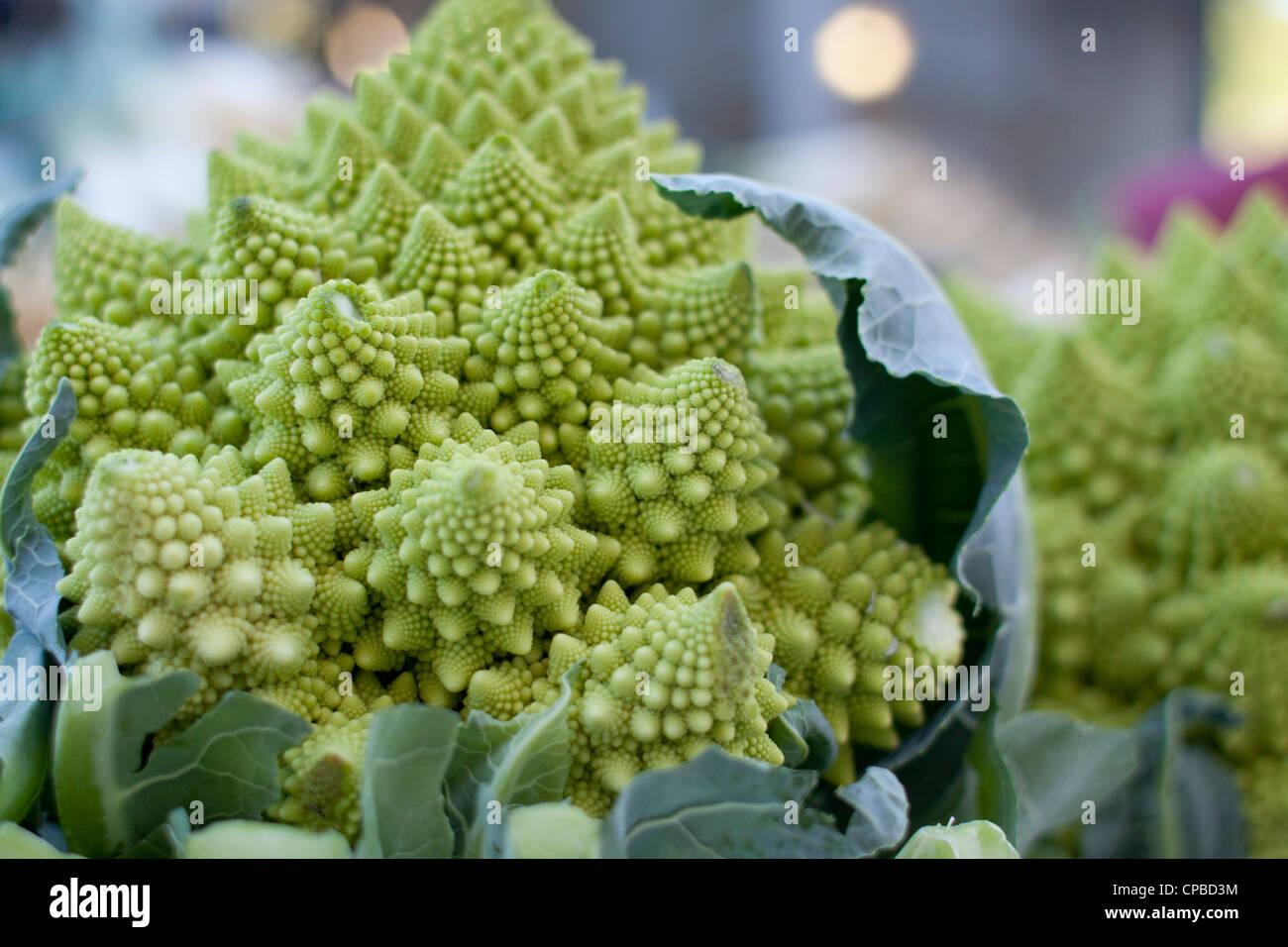 Farm fresh Romanesco broccoli, a variant of cauliflower aka broccoflower, on display at a farmer's market in - Stock Image