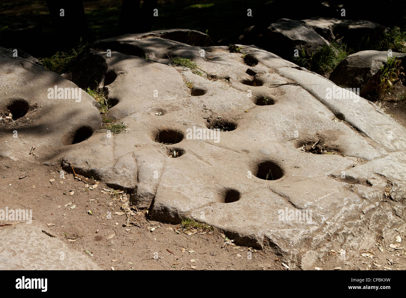 Native American Indian acorn grinding holes in bedrock at the Marshall Gold Discovery state historic park in Coloma - Stock Image