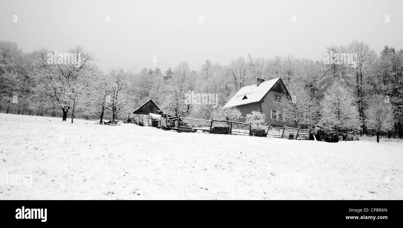 detached house in winter Stock Photo