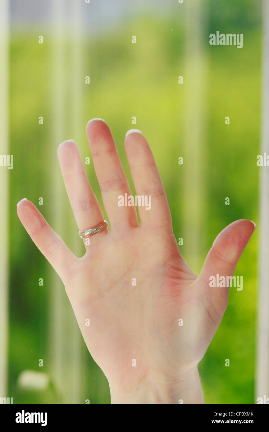 hand behind the glass on a beautiful background Stock Photo