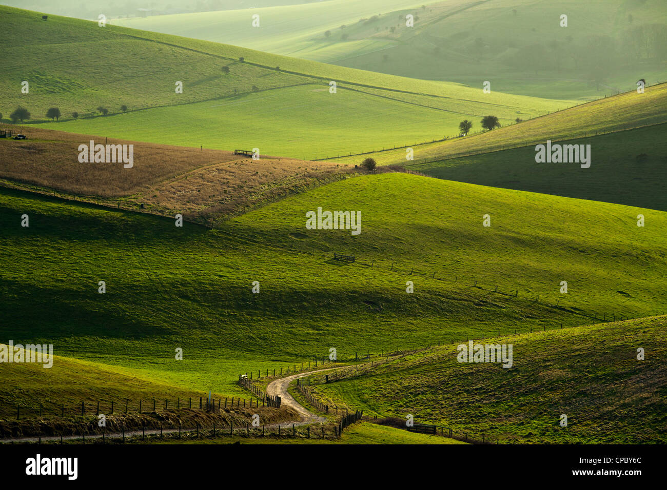 South Downs National Park, East Sussex, England. - Stock Image