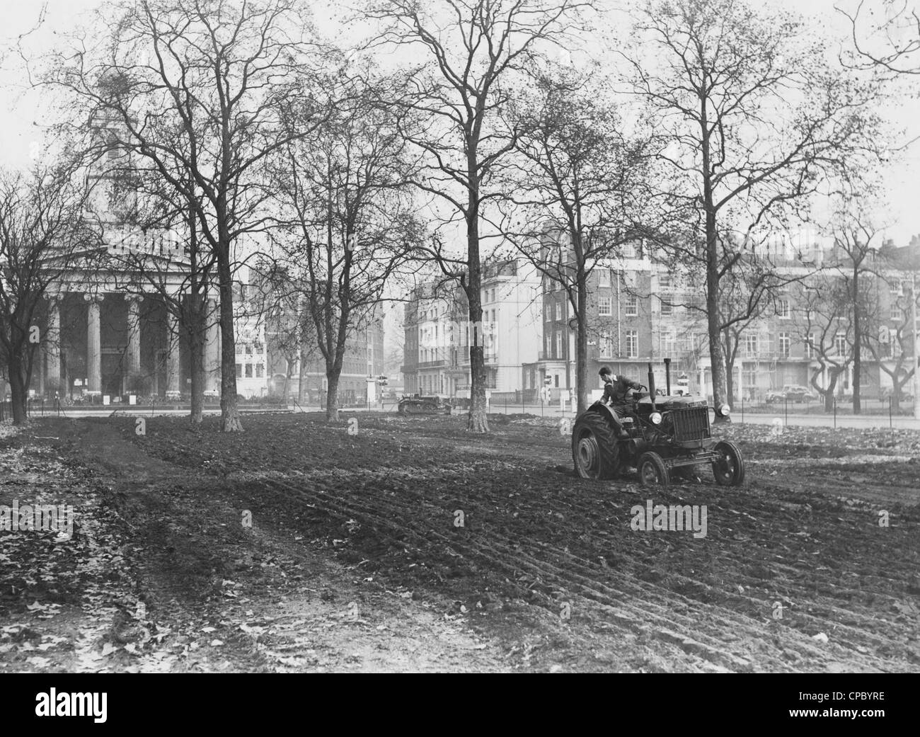 Eaton Square, Belgravia. A vintage Fordson tractor drawing a plough in Eaton Square, which is being cleaned up in - Stock Image