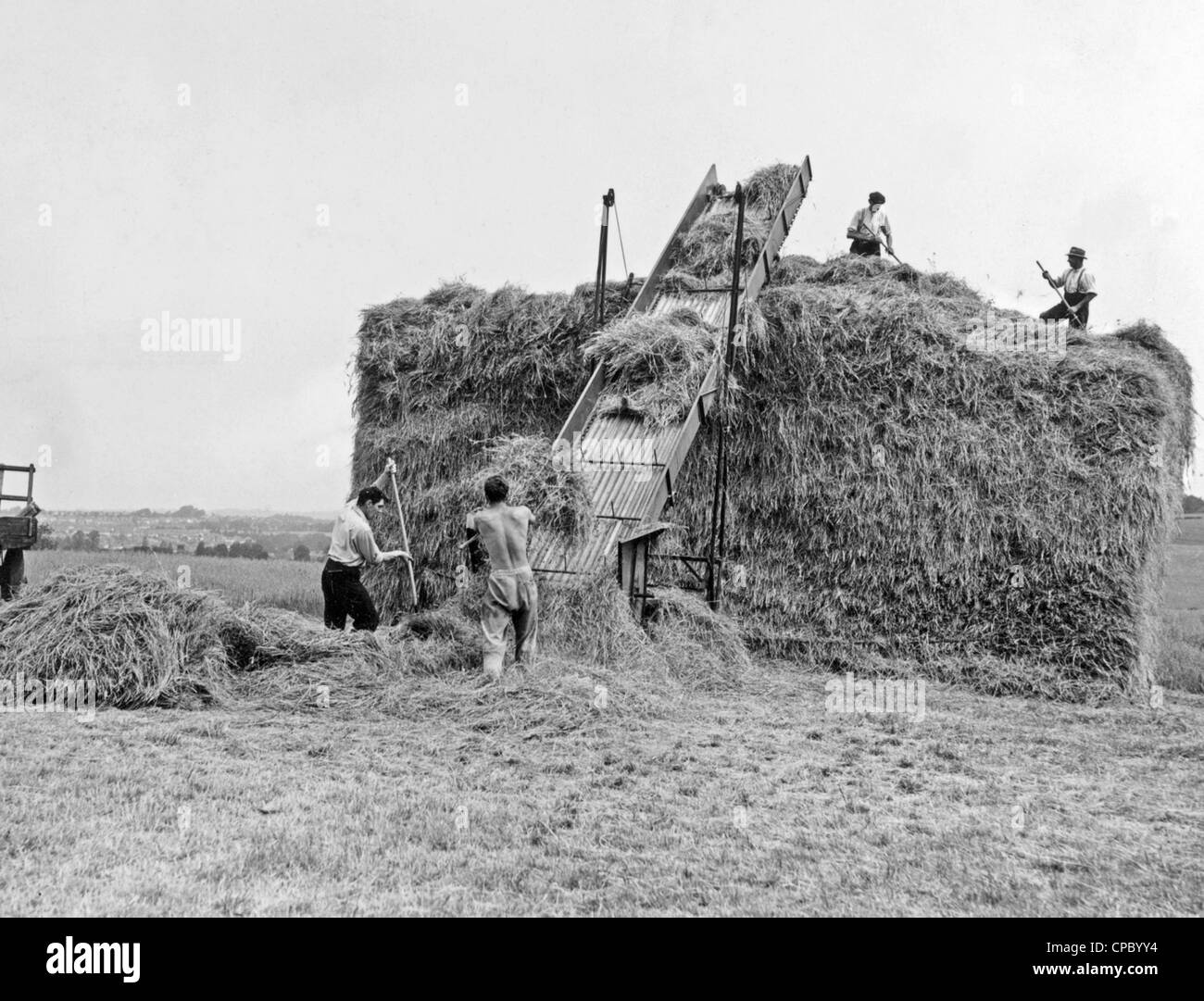 Building a haystack in 1950s hay carried to top of stack by an elevator - vintage farming - Stock Image