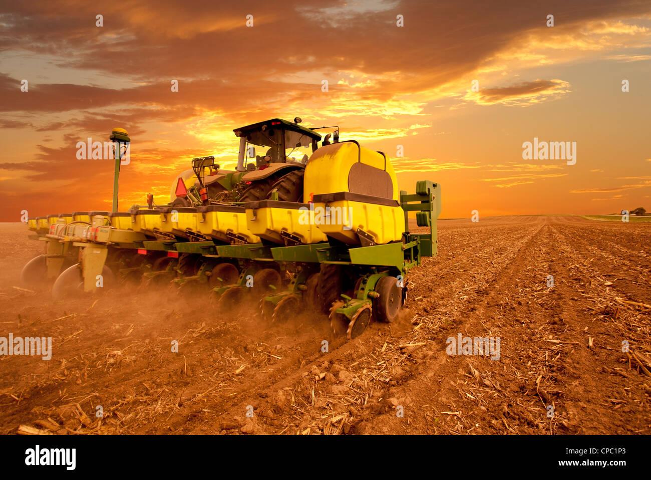Planting Corn - Stock Image