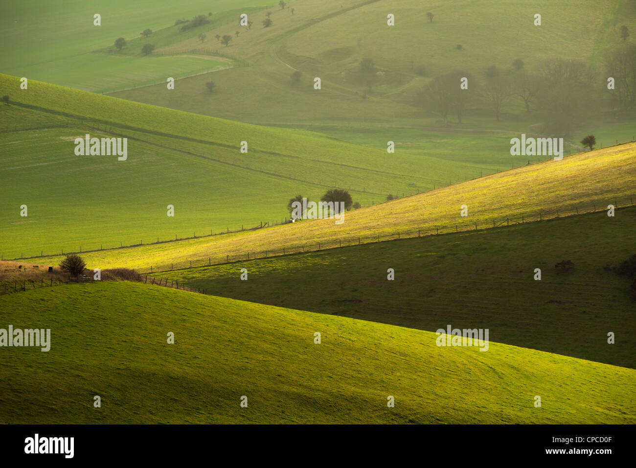 Winter afternoon in South Downs National Park, East Sussex, England. - Stock Image
