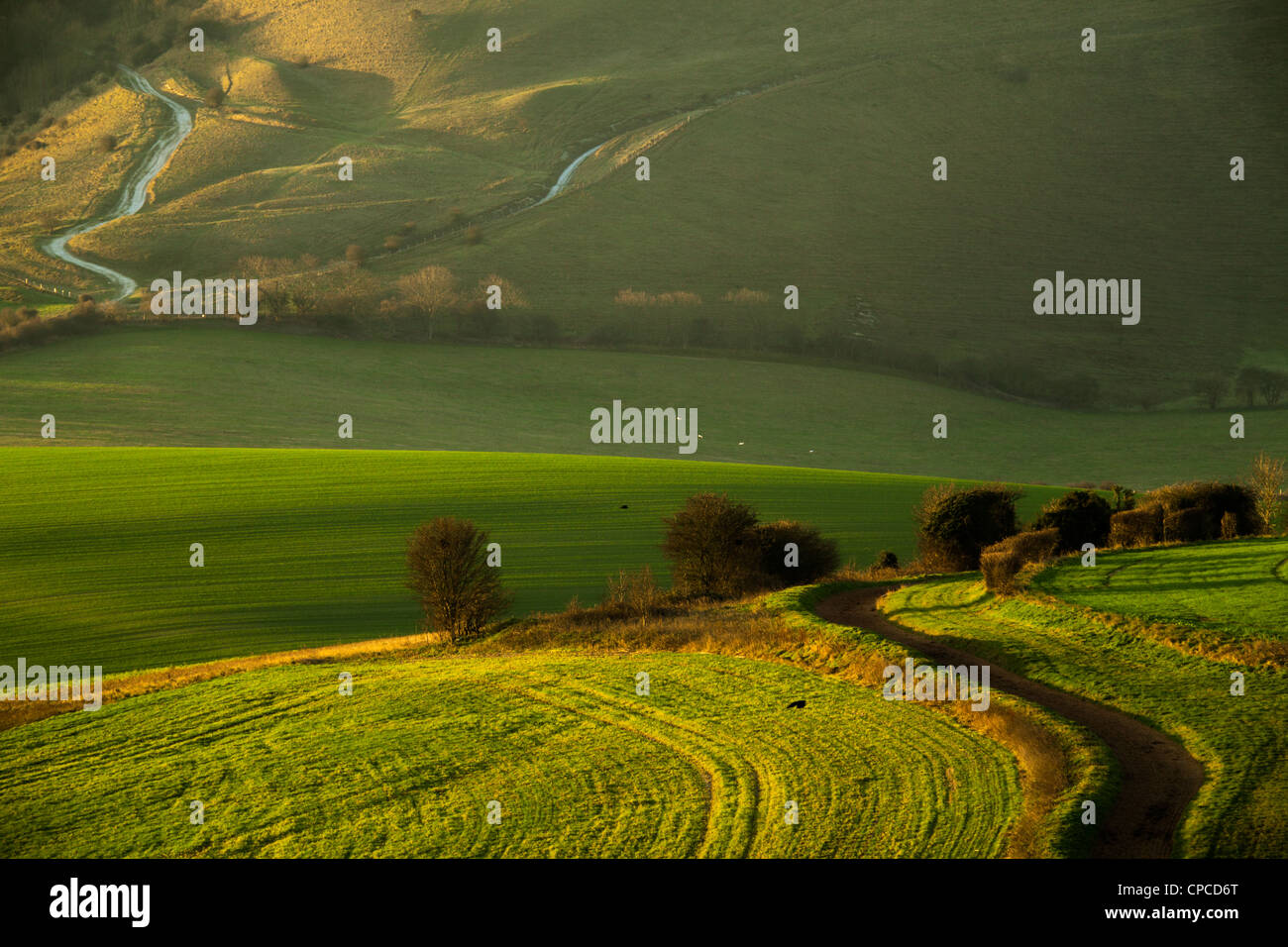 Winter morning in South Downs National Park, East Sussex, England. - Stock Image