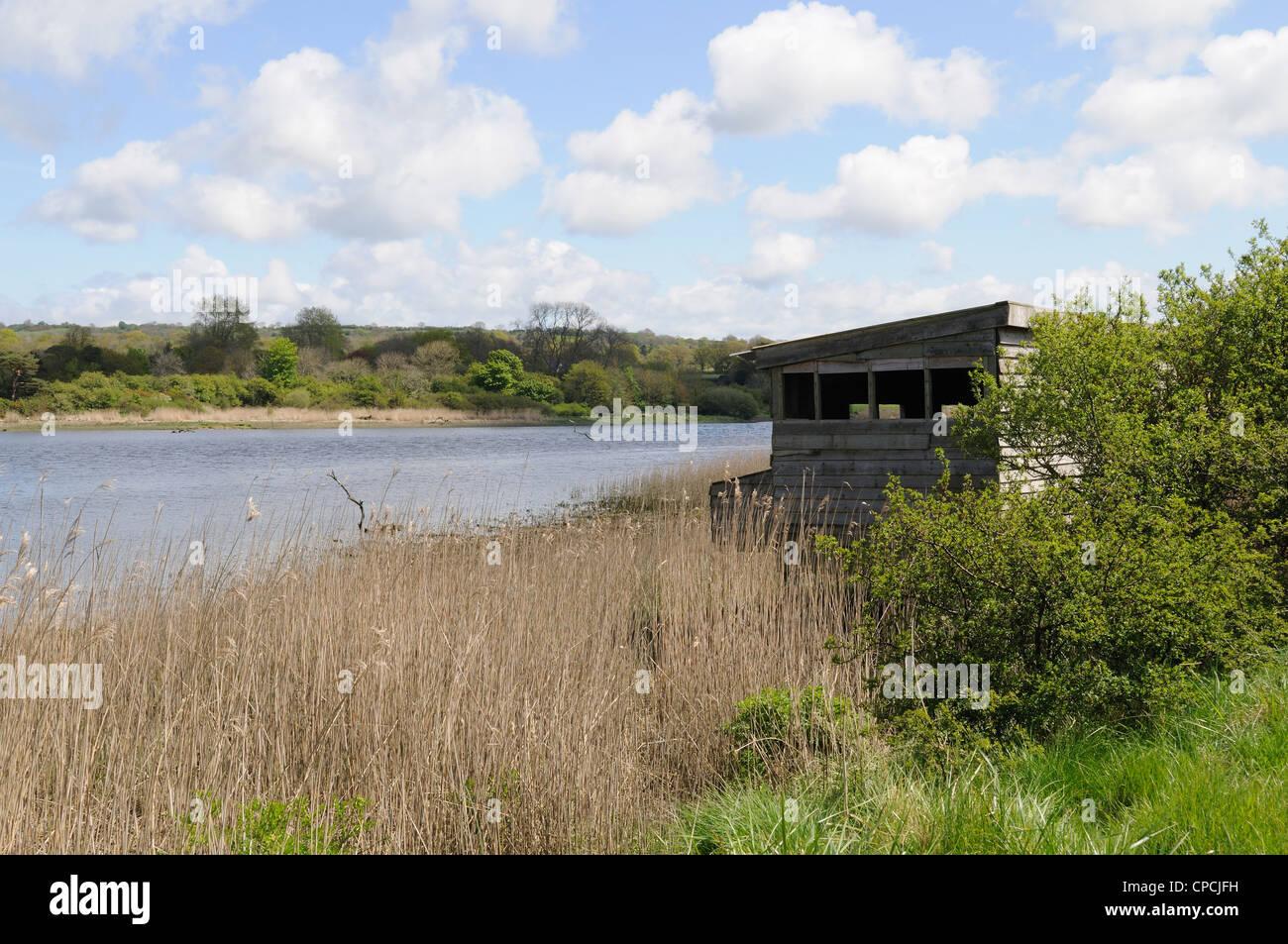 Bird Hide looking over Teifi Marshes Welsh Wildlife and Wetland Centre Cilgerran Cardigan Wales Cymru UK GB Stock Photo
