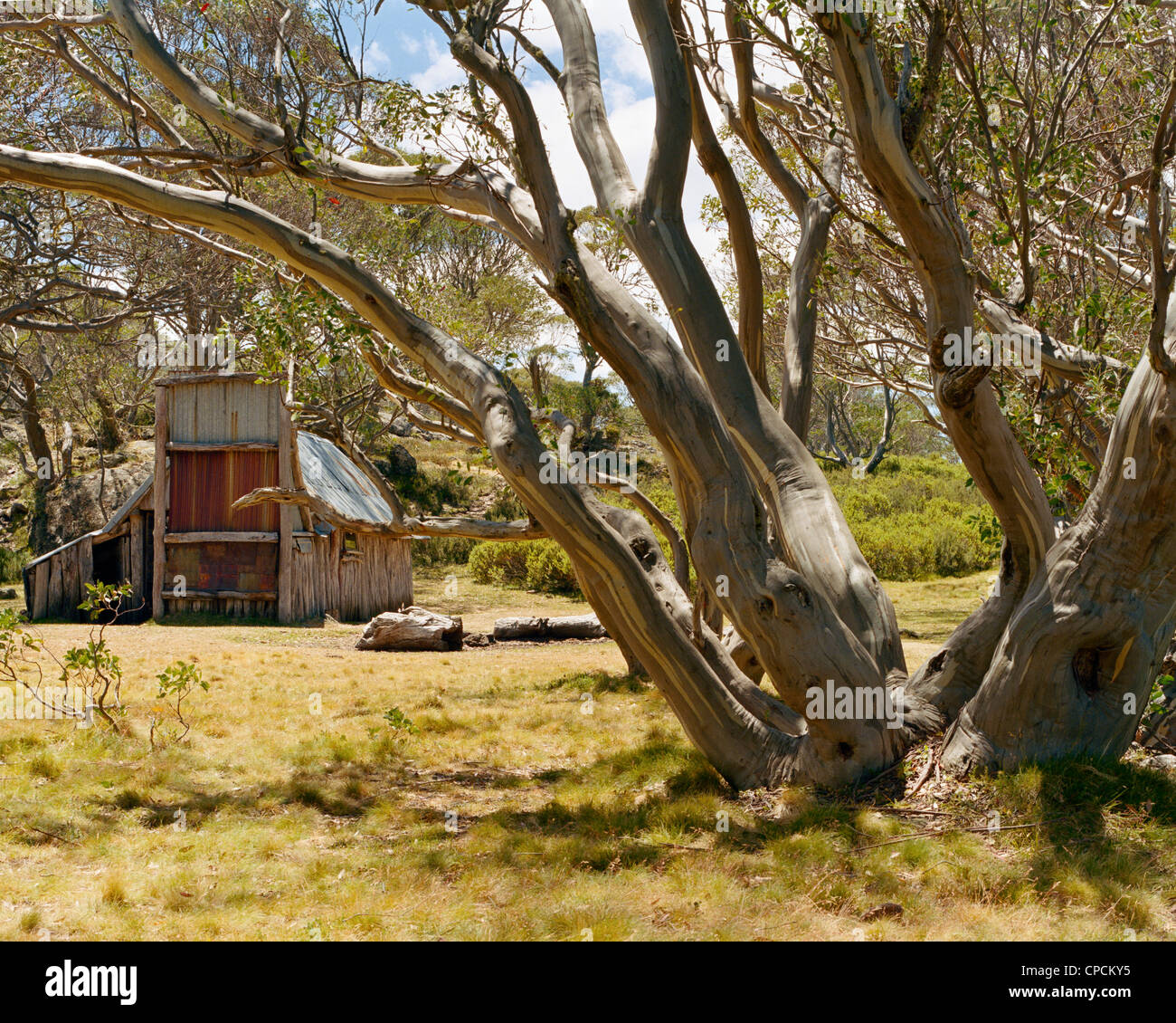 Wallace's Hut in the Victorian High Country Australia - Stock Image