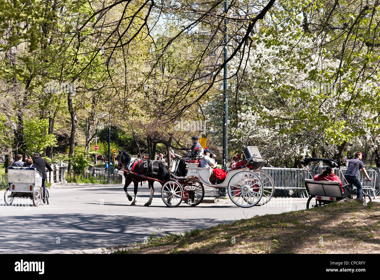 traditional horse & carriage & rival pedicabs give visitors romantic tour of Central Park on beautiful spring - Stock Image