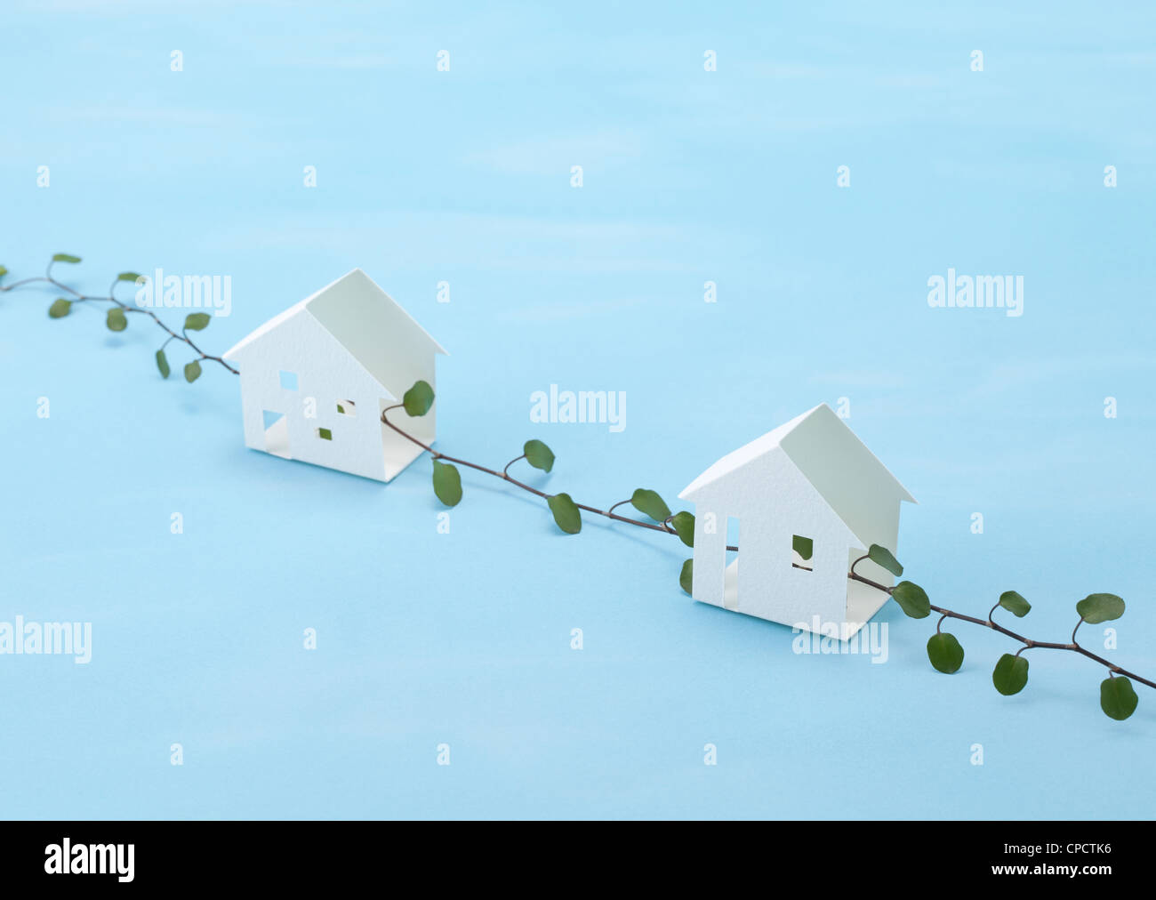 Miniature houses and wire vine (Ecology image Stock Photo: 48225946 ...
