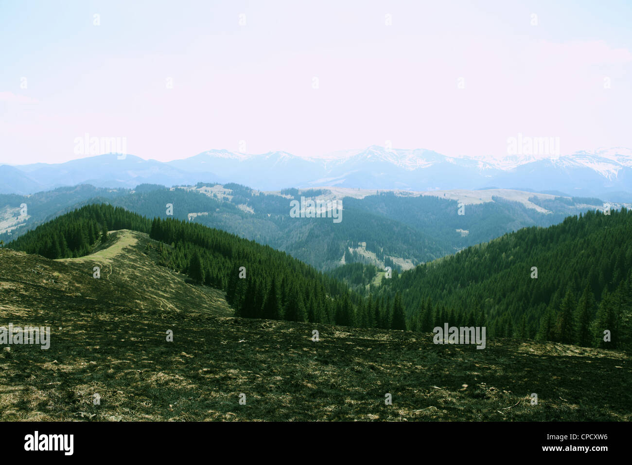 The View for the Montenegrin Ridge in snow, Carpathians, Ukraine Stock Photo