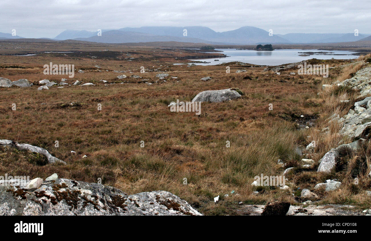 Rugged landscape of Connemara, Connemara, County Galway, Connacht, Republic of Ireland - Stock Image