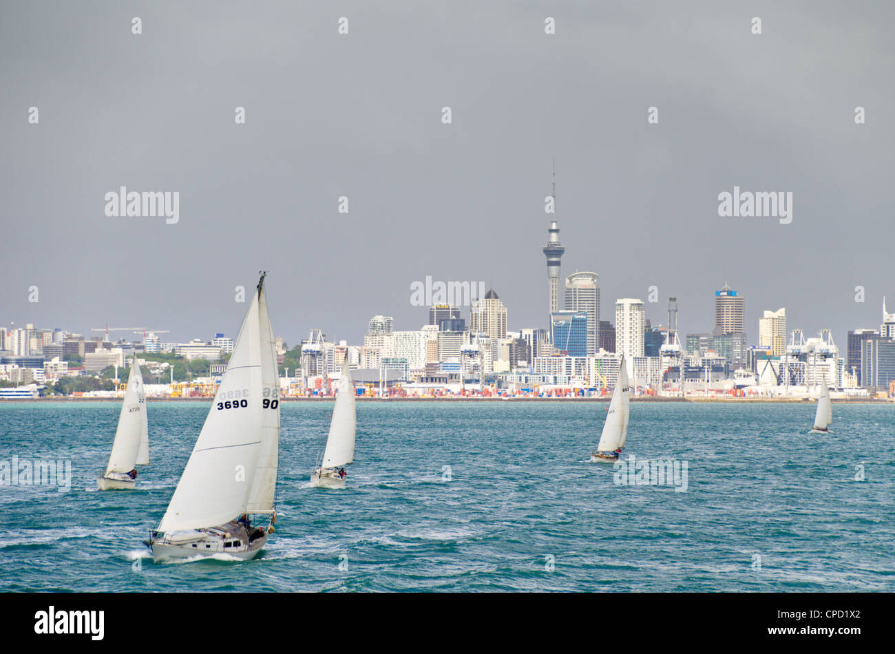 Auckland, North Island, New Zealand, Pacific - Stock Image