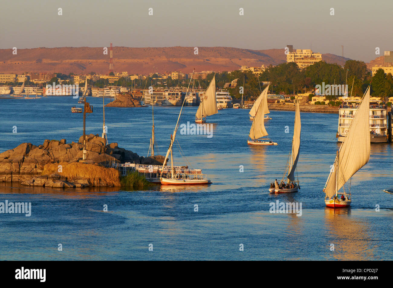 Feluccas on the River Nile, Aswan, Egypt, North Africa, Africa Stock Photo
