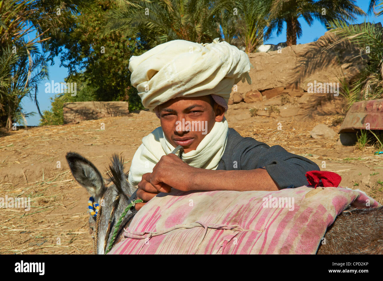 Ramadi village, Nile Valley between Luxor and Aswan, Egypt, North Africa, Africa Stock Photo