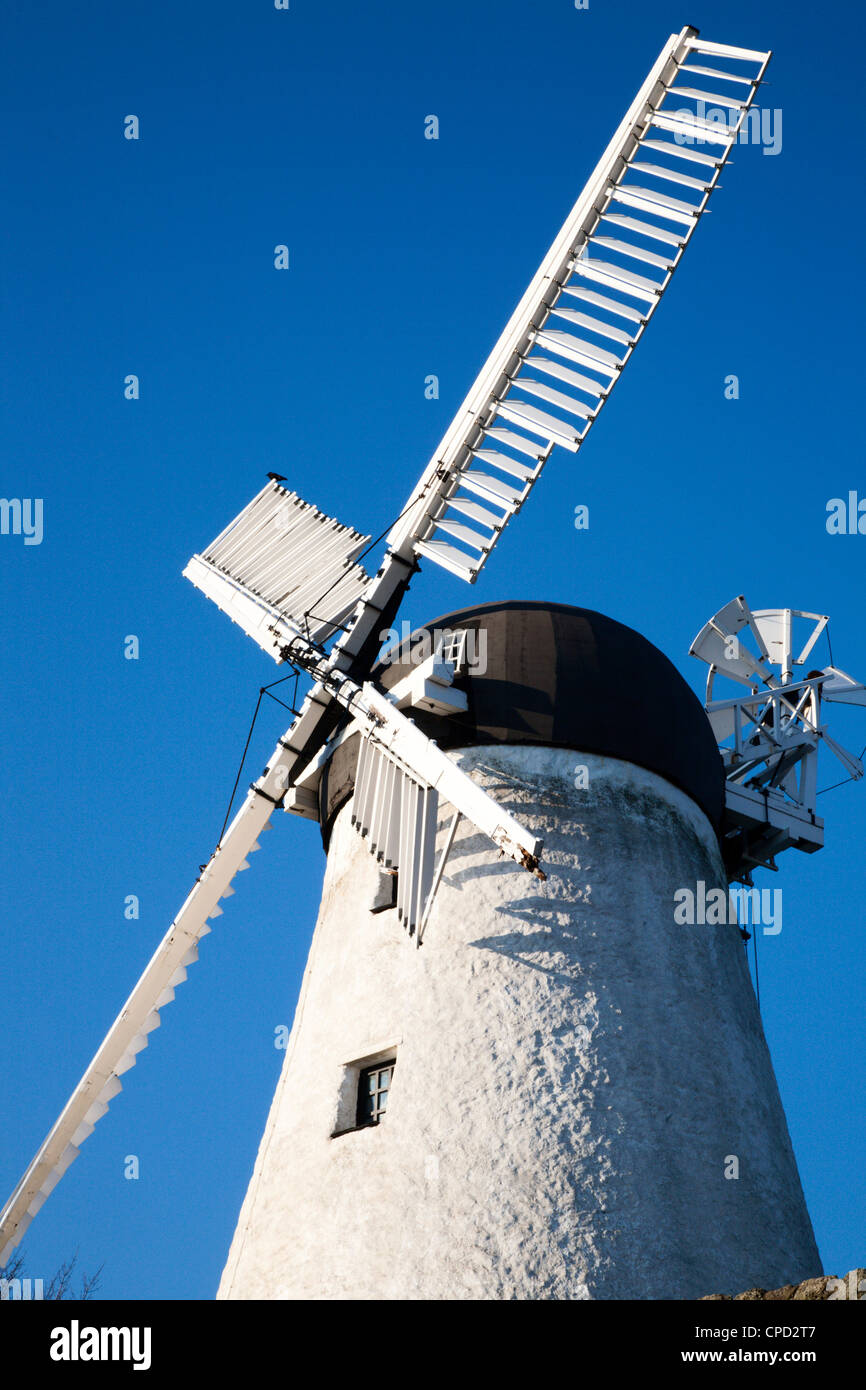 Fulwell Mill, Sunderland, Tyne and Wear, England, United Kingdom, Europe - Stock Image