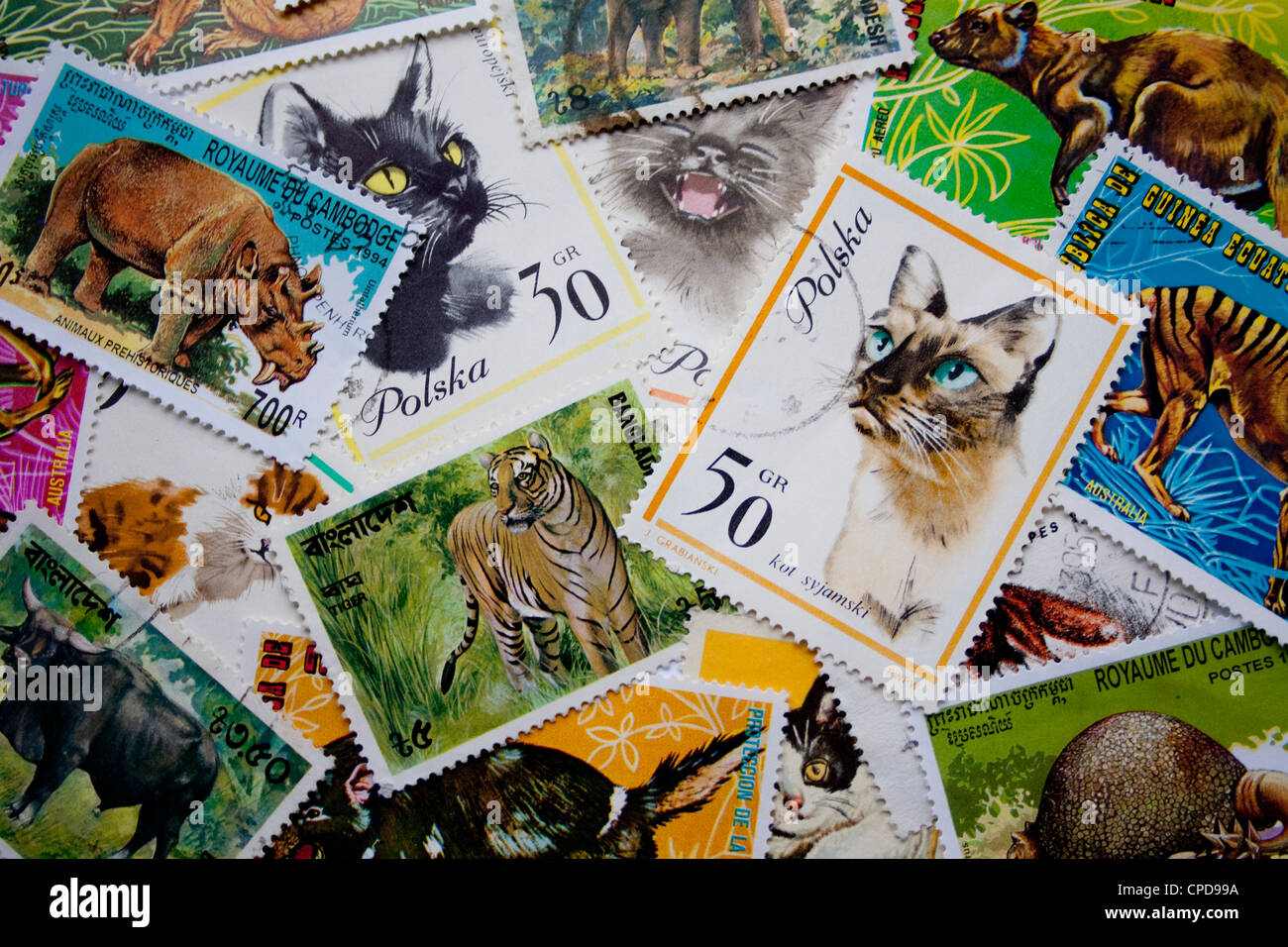 A collection of animal stamps from different countries, such as Poland, Equatorial Guinea, Cambodia, Bangladesh - Stock Image