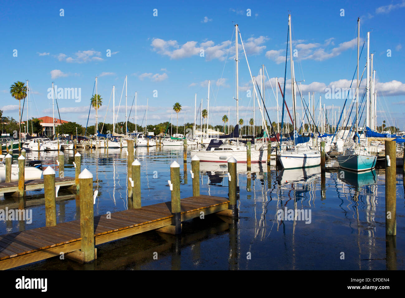 Marina, St. Petersburg, Gulf Coast, Florida, United States of America, North America - Stock Image
