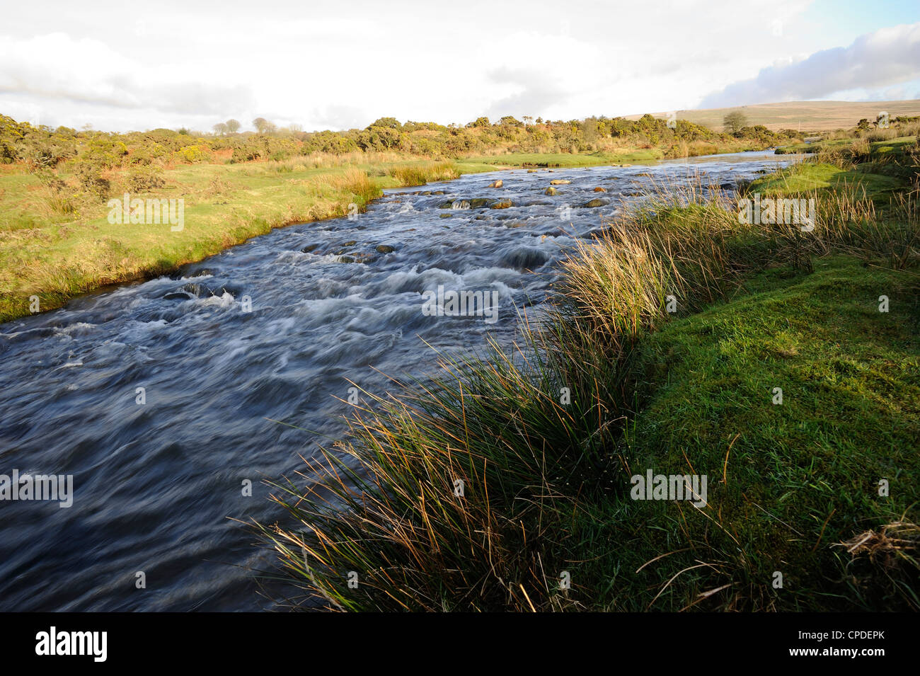 Blacka Brook, in the area where the film War Horse was filmed, Dartmoor National Park, Devon, England, United Kingdom, - Stock Image