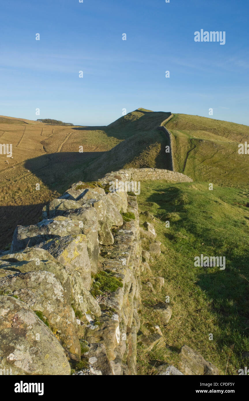 View east to Kings Hill, Hadrians Wall, Northumbria National Park, Northumbria, England, United Kingdom, Europe - Stock Image