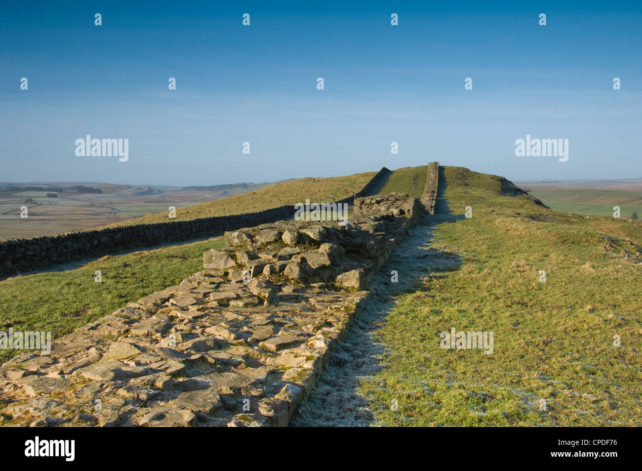 The width of the wall clearly seen looking west at Cawfields, Hadrians Wall, Northumbria, England, UK - Stock Image