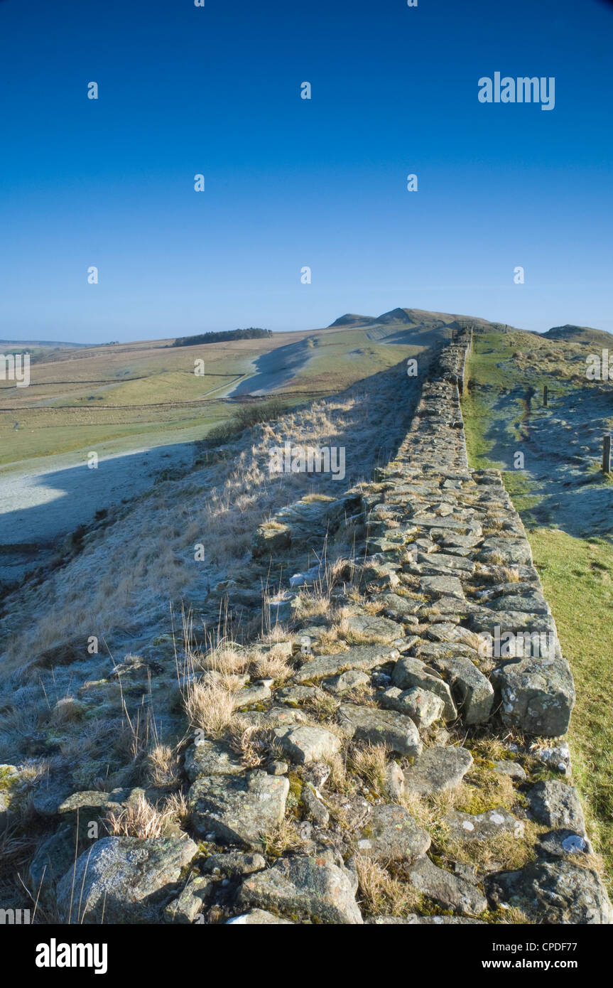 A section of the Wall, Hadrians Wall, Northumberland National Park, Northumbria, England, UK - Stock Image