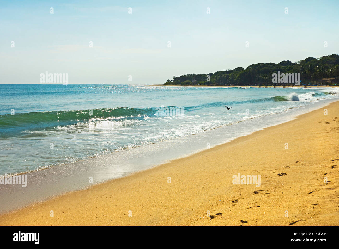 View towards the famous surf point at the south end of this popular fishing beach, Arugam Bay, Eastern Province, - Stock Image