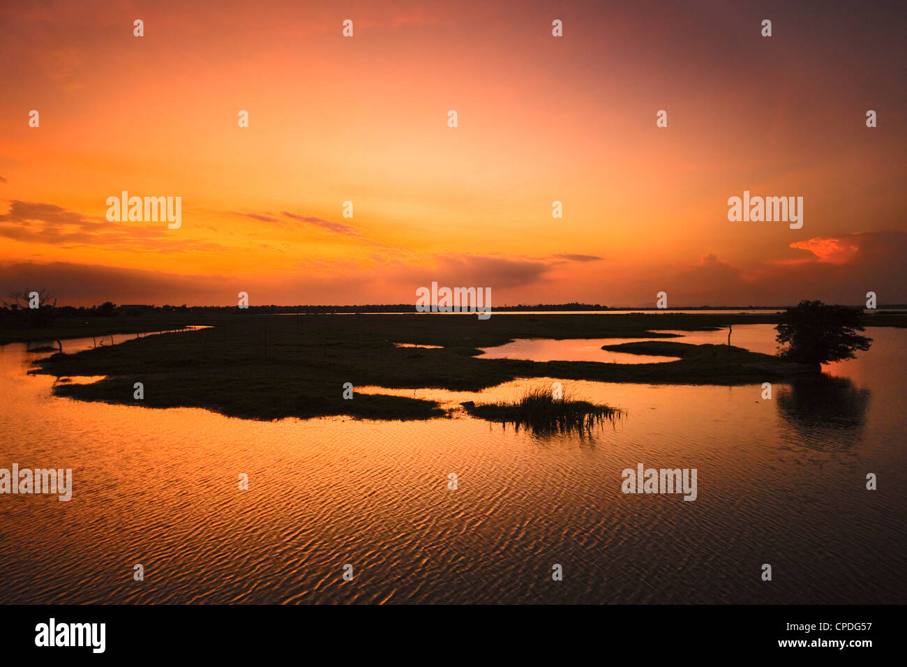 Arugam Lagoon at sunset, a good wildlife area, Pottuvil, Arugam Bay, Eastern Province, Sri Lanka, Asia - Stock Image