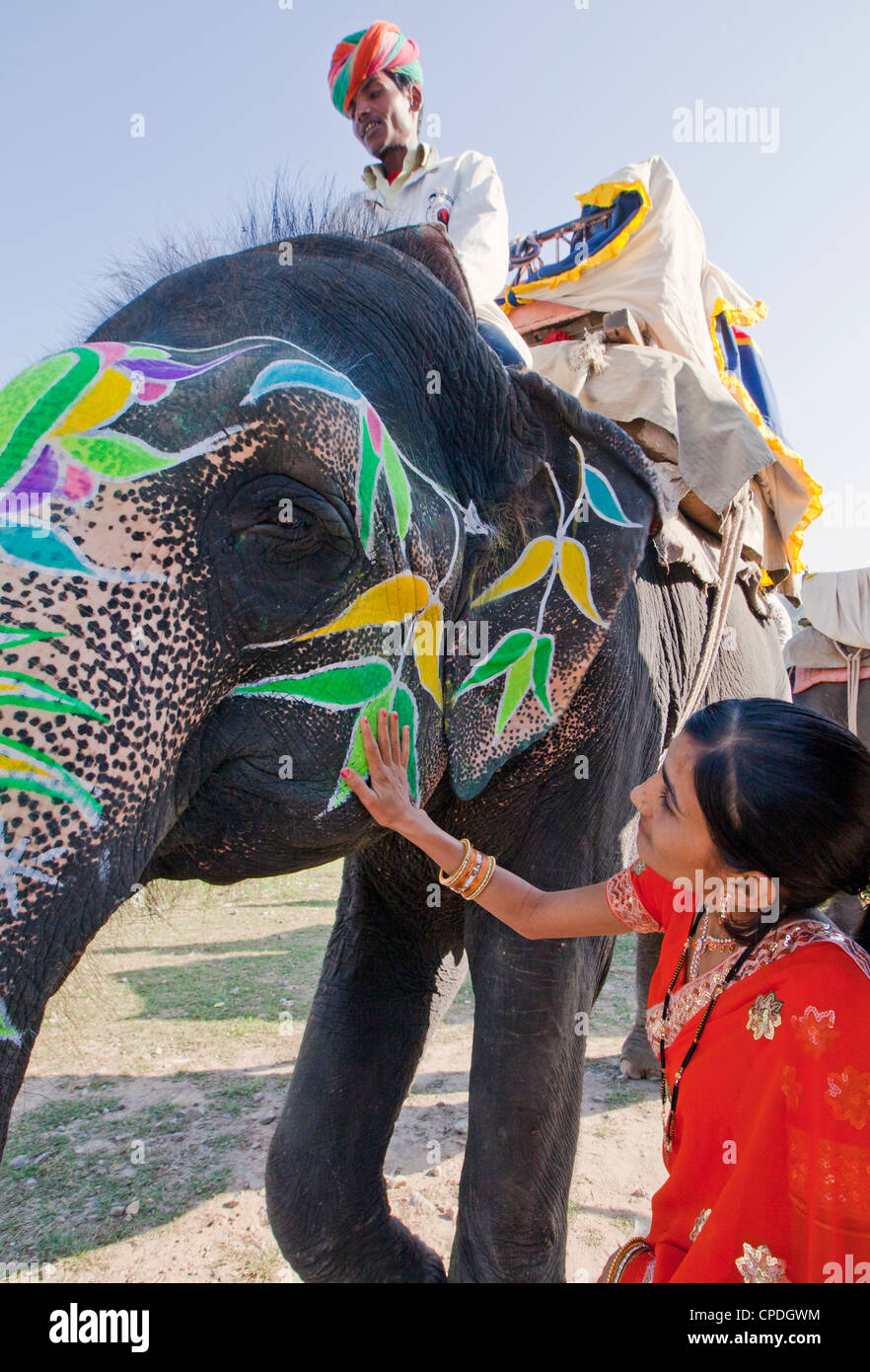 Woman in colourful sari with a painted ceremonial elephant in Jaipur, Rajasthan, India, Asia - Stock Image