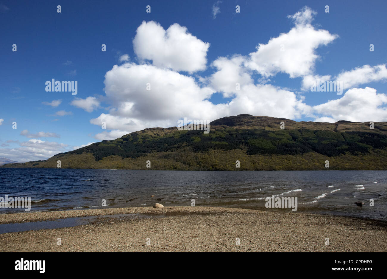 Loch Lomond shoreline and Ben Lomond Scotland UK - Stock Image