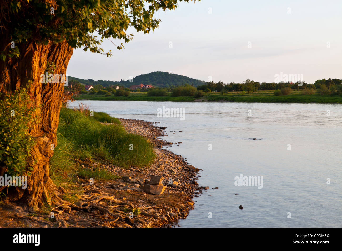 The mighty River Elbe, Saxony, Germany, Europe - Stock Image