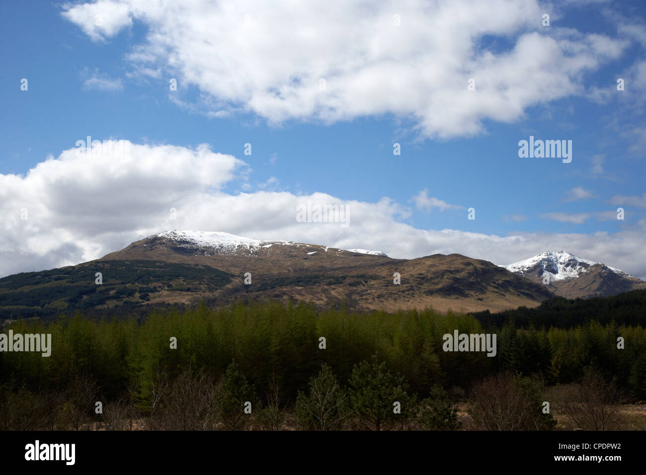 conifer forest beneath grampian mountains in the highlands Scotland UK - Stock Image