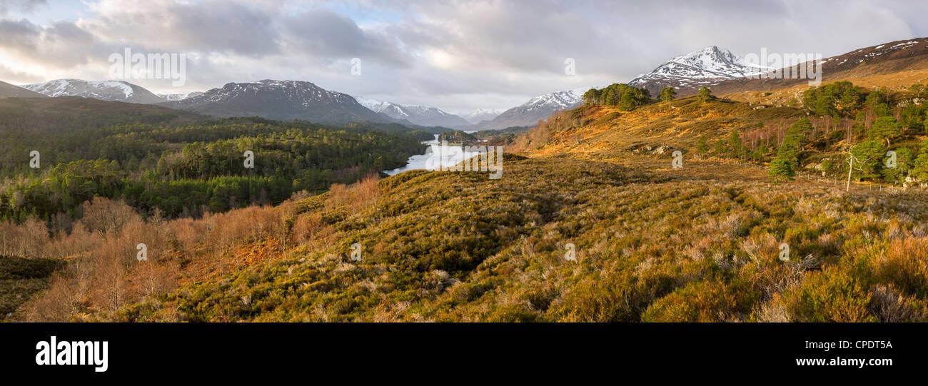 Sunrise at Glen Affric, Highlands, Scotland, UK - Stock Image