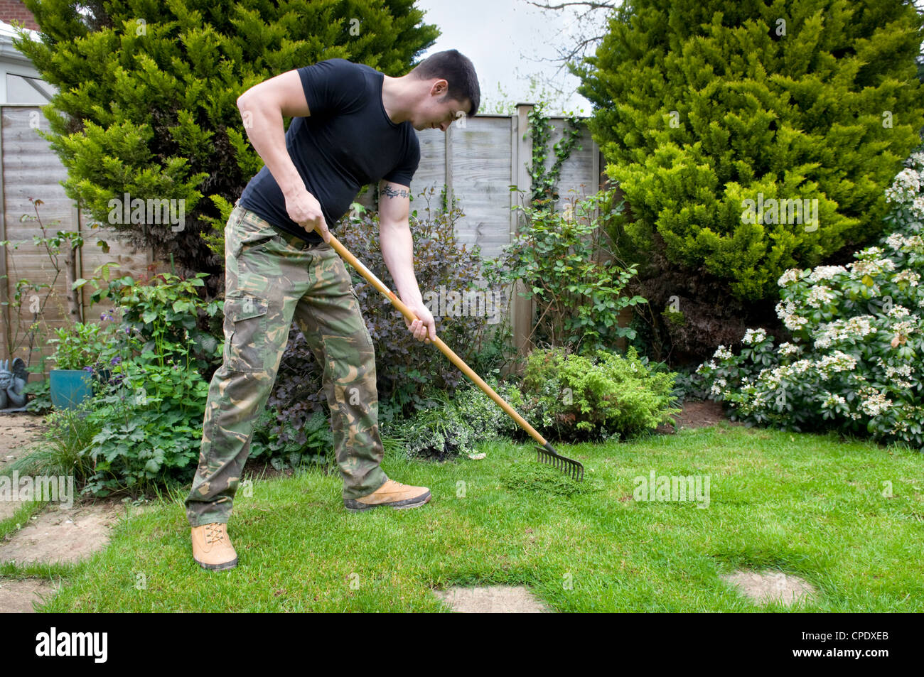 Young Caucasian man raking cut grass in garden in Bristol, UK - Stock Image