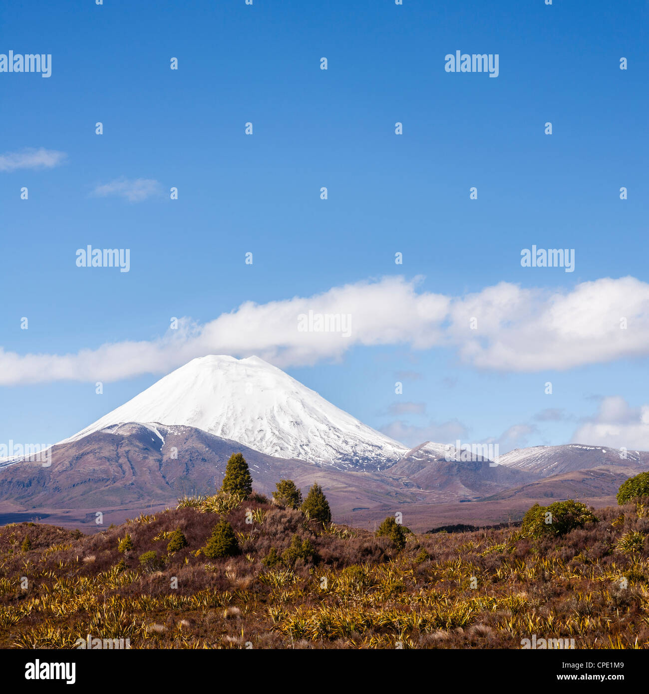 Mount Ngauruhoe seen from the west, in Tongariro National Park, New Zealand. - Stock Image