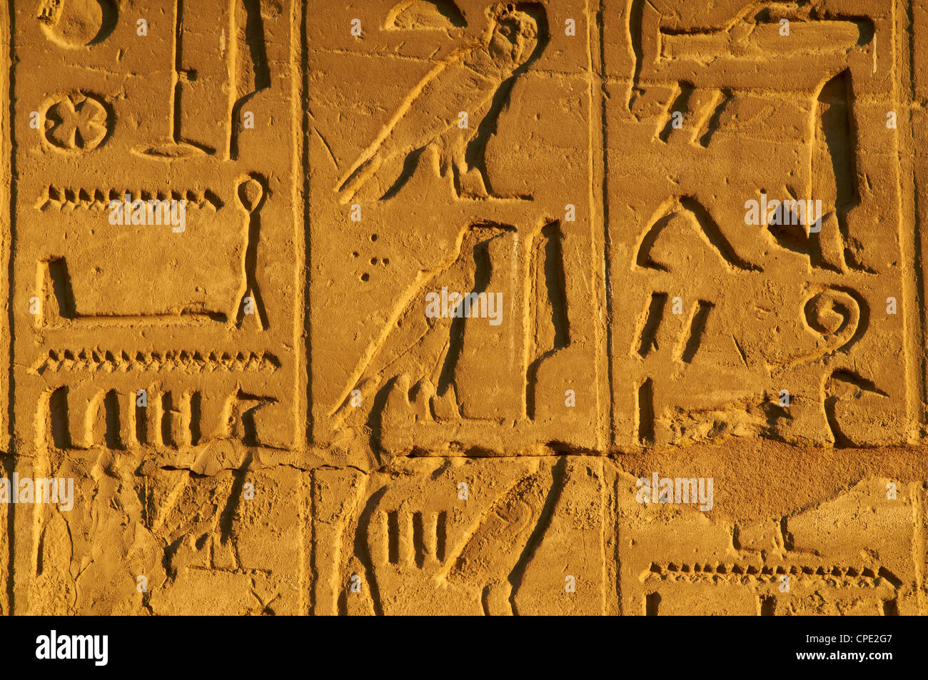 Bas relief, Temple of Luxor, Thebes, UNESCO World Heritage Site, Egypt, North Africa, Africa - Stock Image