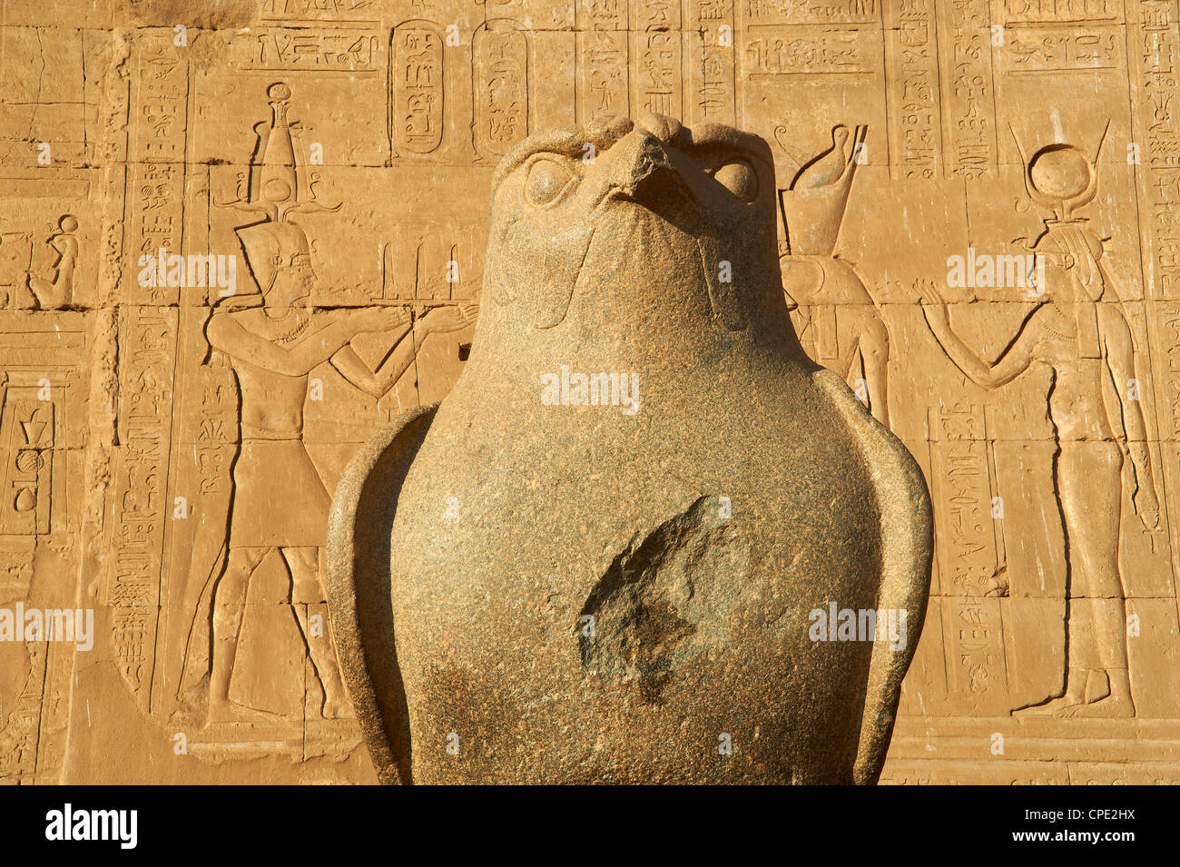 Statue of falcon, Temple of Horus, Edfu, Egypt, North Africa, Africa - Stock Image