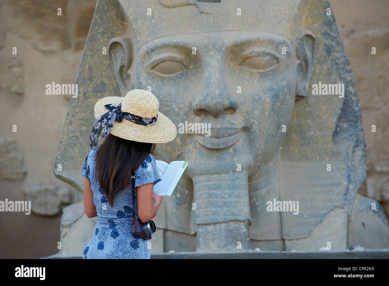 Tourist studying a statue of the pharaoh Ramesses II, Temple of Luxor, Luxor, Thebes, UNESCO World Heritage Site, - Stock Image