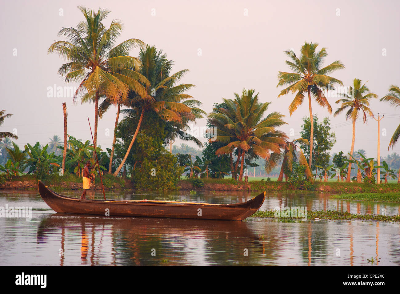 Boat on the backwaters, Allepey, Kerala, India, Asia - Stock Image