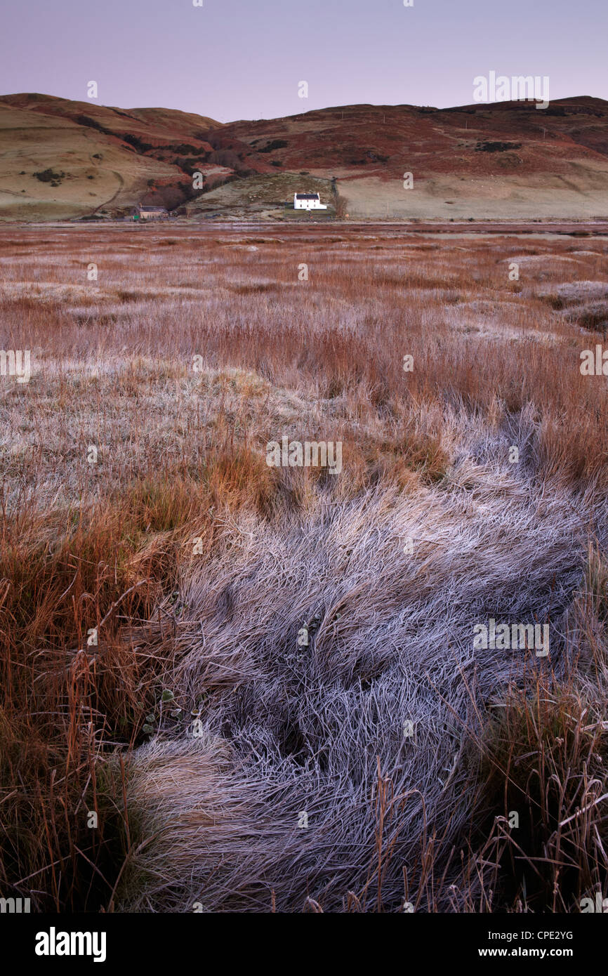 A frosty morning on the marshes at the shore of Loch Harport, Isle of Skye, Inner Hebrides, Scotland, United Kingdom, - Stock Image