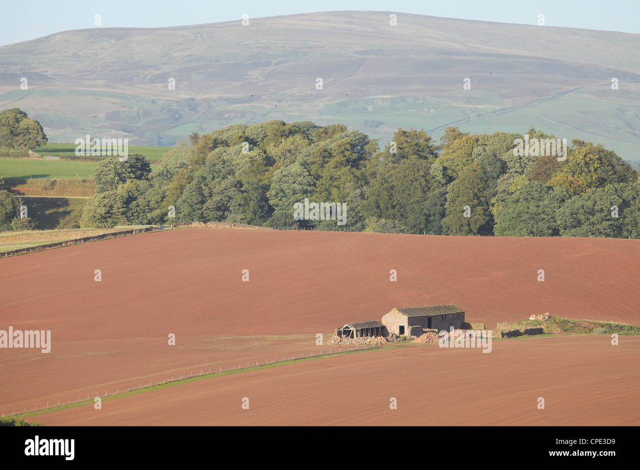 Crowdyknowe barn in a  ploughed field near Staffield with Blotting Raise summit on Croglin Fell, Eden Valley Cumbria - Stock Image
