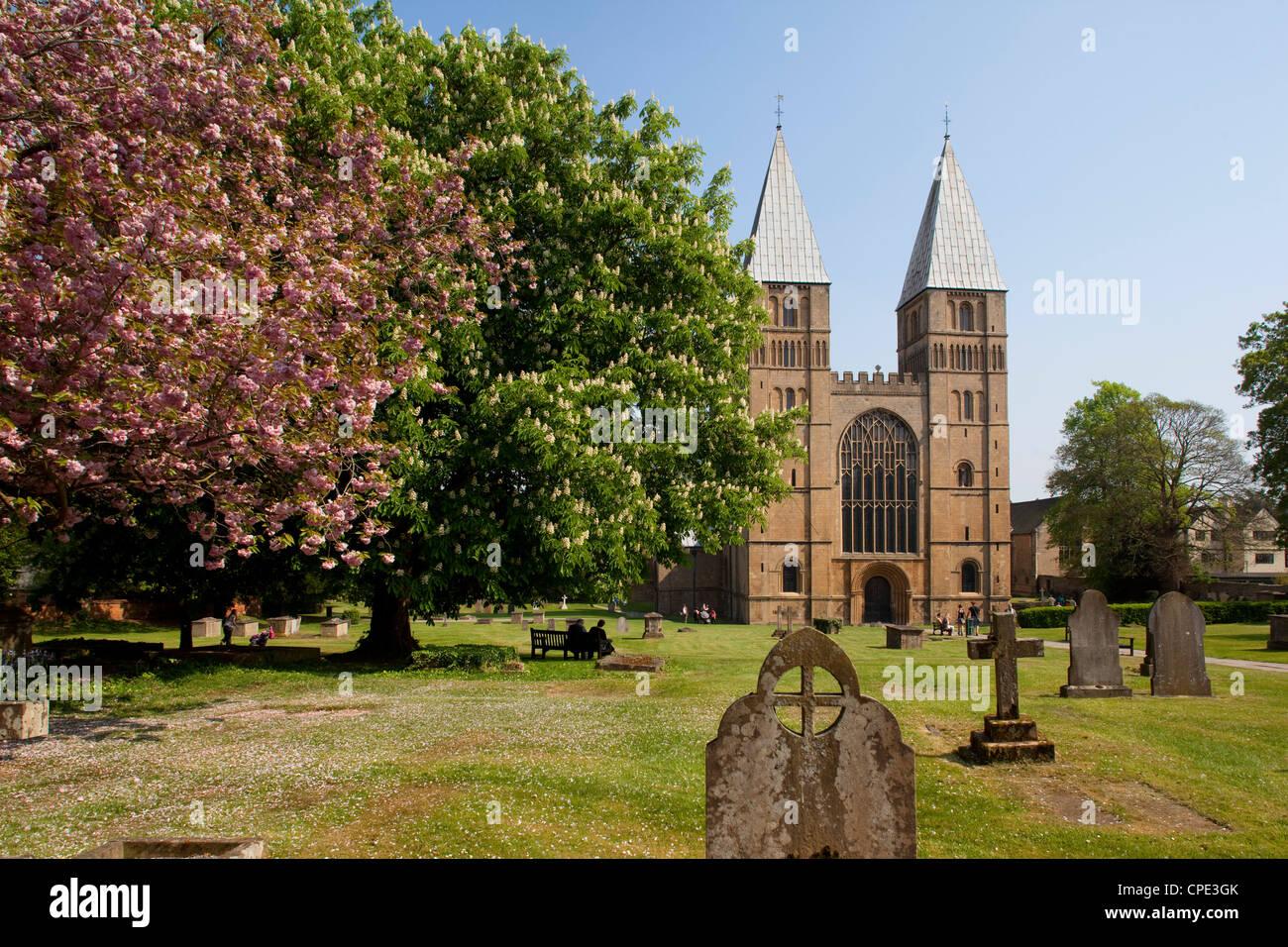 Southwell Minster, Southwell, Nottinghamshire, England, United Kingdom, Europe - Stock Image