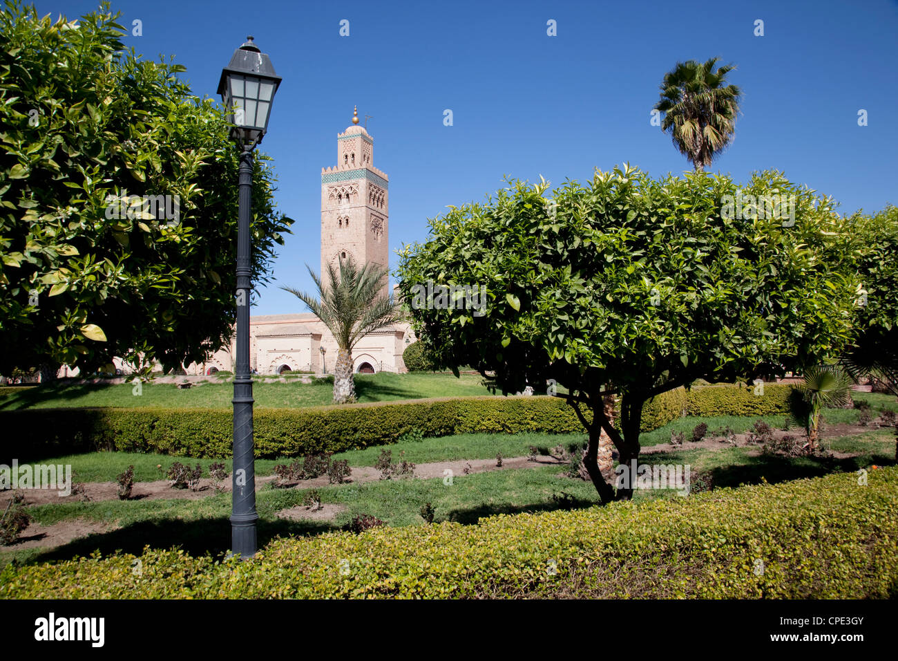 Koutoubia Mosque Minaret and Librairie Municipal, Marrakesh, Morocco, North Africa, Africa - Stock Image