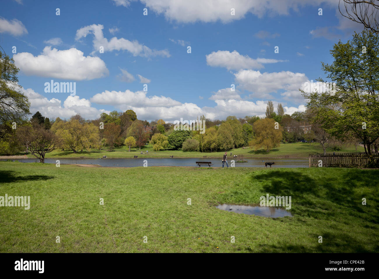 Hampstead Heath, Highgate, London, England, UK. - Stock Image