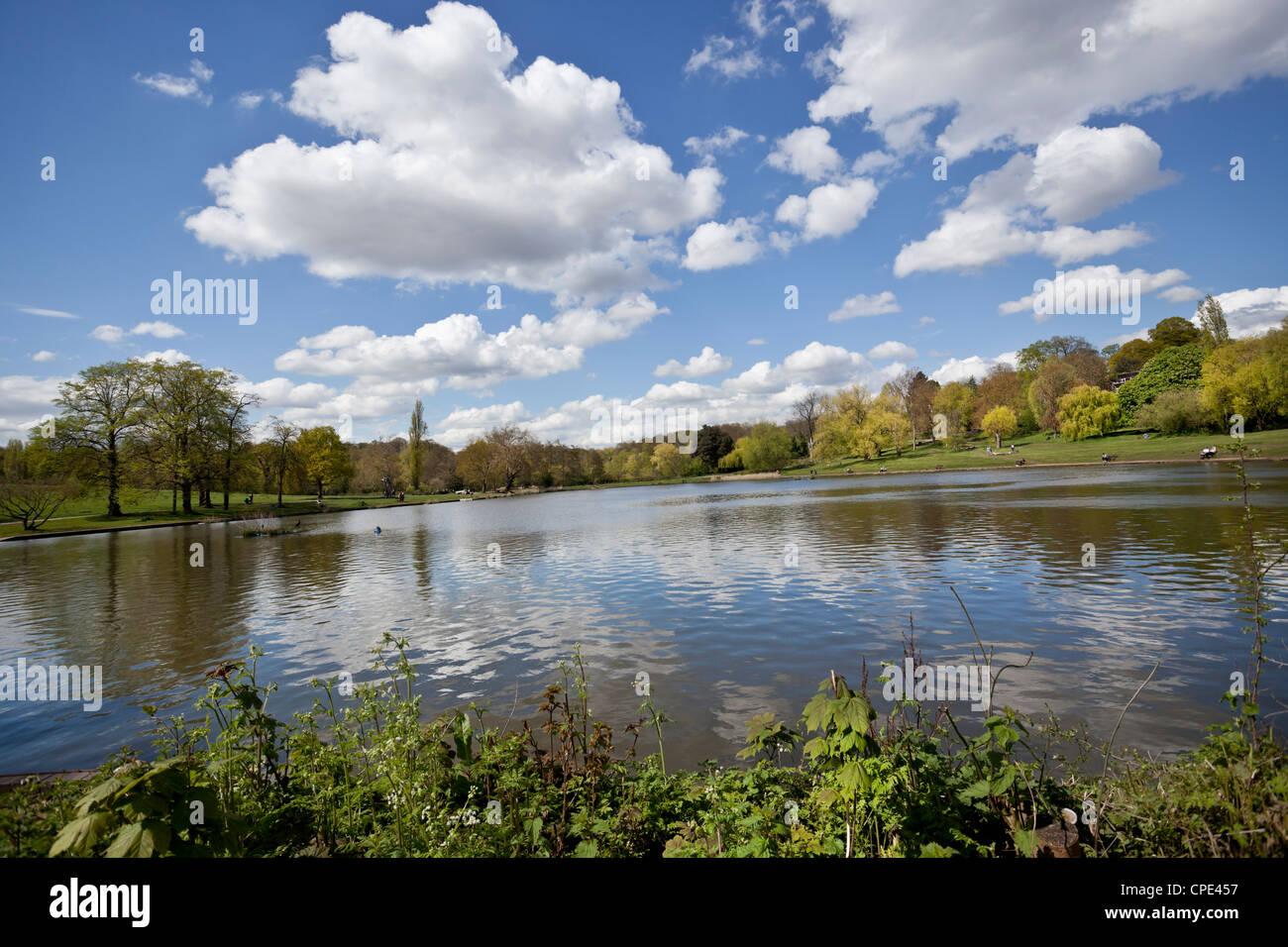 Hampstead Heath, London, England, UK - Stock Image